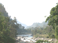 Himalayas, foothills. Forest near the river. Pictures of Himalaya